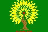 انقلاب روژاوا، پيروزي عملي خط سوم و مدرنيته دمكراتيك