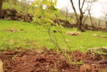 15فروردین(4 آوریل) رستاخیز ملت های تحت ستم