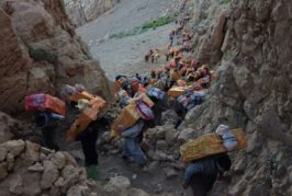 کولبری تجارتی قاچاق یا شغلی تحمیلی در کردستان؟