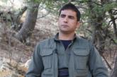 گوران شاهو: مشارکتی فعالانه در کارزار