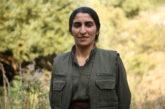 زیلان وژین: تغییرات بنیادین در حکومت ایران راهگشای بحرانهای کنونی است