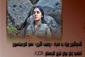 روهیف آگری: گریلا شدن آرزوی هر جوان کرد میباشد